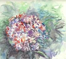 Bluete-violett-a8707ff-62x47cm