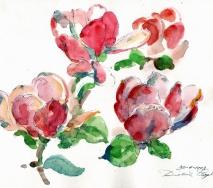 magnolien-a9304ffs-40x30cm