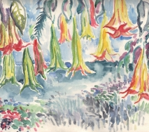 trompetenblumen-a9006-62x47cm