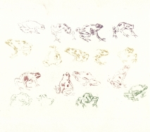 froesche-bunt-r0000ff-40x26cm