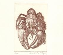 hummer-braun-r0000ff-20x27cm