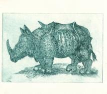 nashorn-gruen-r0000ff-40x26cm