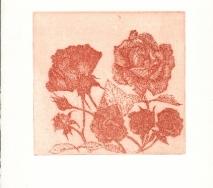 rosen-rot-braun-r0000ff-28x40cm