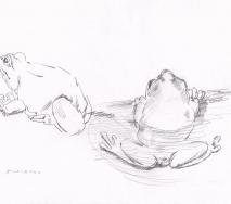 frosch-duett-b0010ff-40x30cm