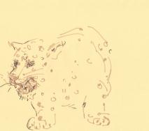 leopard-b1307ff-40x30cm