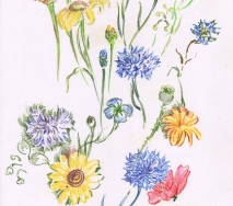 mohn-und-kornblumen-b0808ff-30x40cm
