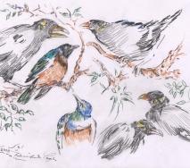 vogeltreffen-b0804ff-40x30cm
