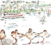 enten-an-der-hamburger-alster-a1207hc-44x36-cm