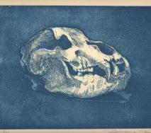 schaedel-blau-r0000me-53x38-cm