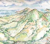 formentera-landschaft-a8405r-65x50cm